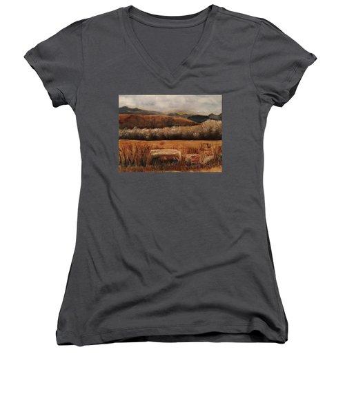 Fall Plains Women's V-Neck T-Shirt