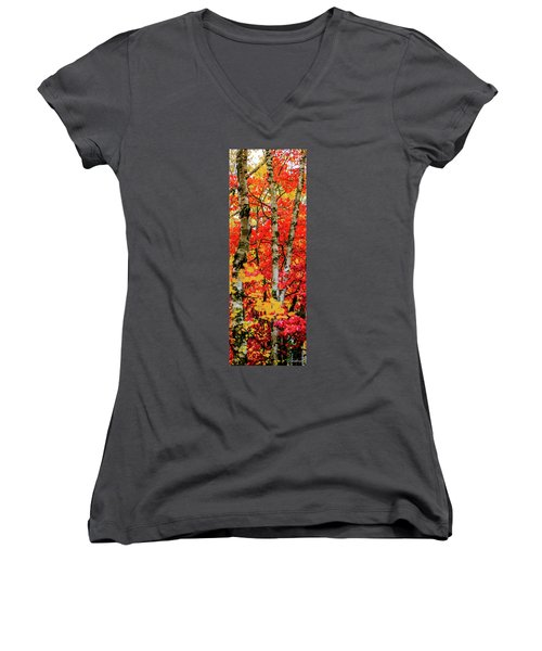 Fall Reds Women's V-Neck (Athletic Fit)