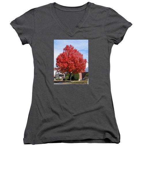 Fall Season Women's V-Neck T-Shirt