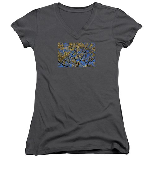 Fall Splendor And Glory Women's V-Neck T-Shirt