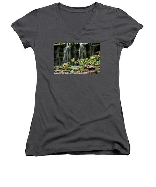 Falling Falls In The Garden Women's V-Neck T-Shirt (Junior Cut) by Iris Greenwell