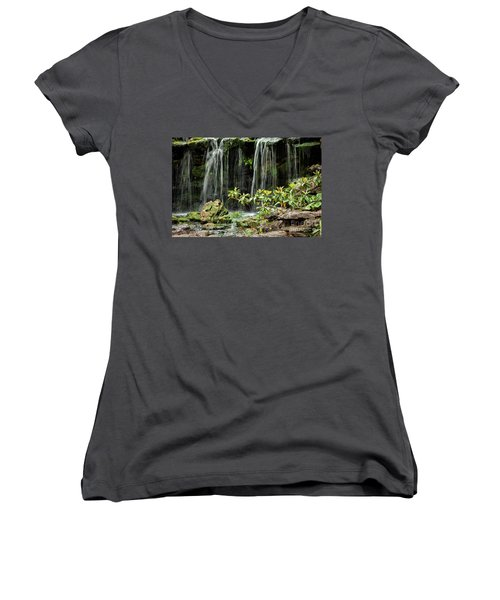 Falling Falls In The Garden Women's V-Neck (Athletic Fit)