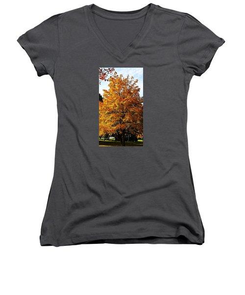 Fallish Yellowish Women's V-Neck T-Shirt (Junior Cut) by Jana E Provenzano