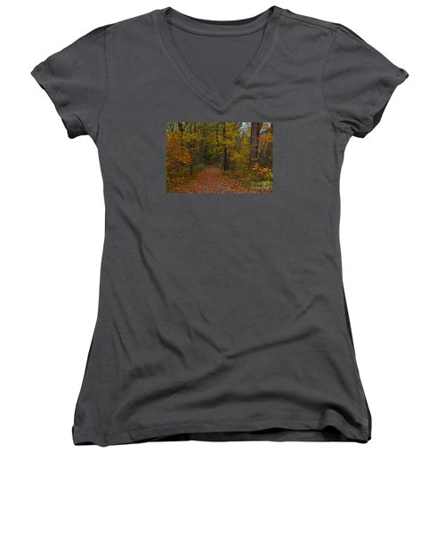 Falls Park Woods In Pendleton Women's V-Neck T-Shirt