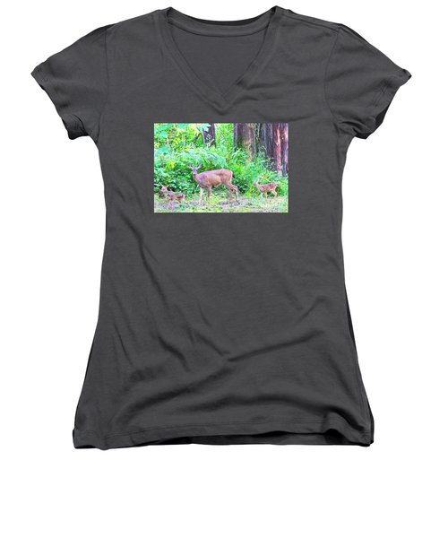 Family In The Wild Women's V-Neck T-Shirt (Junior Cut) by Ansel Price