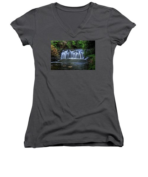 Women's V-Neck T-Shirt (Junior Cut) featuring the digital art Family Time by Sharon Batdorf