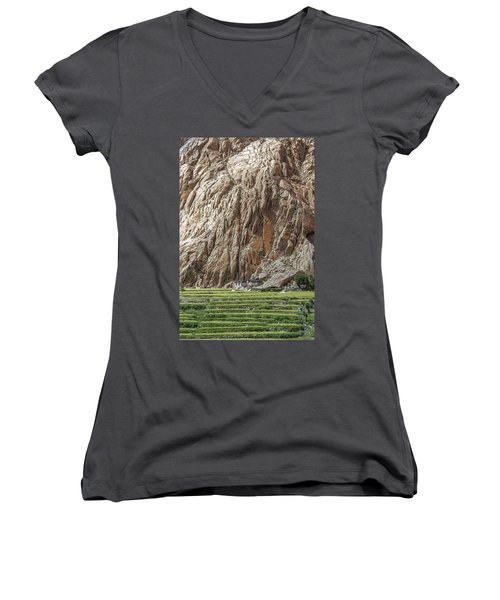 Farm House Women's V-Neck (Athletic Fit)
