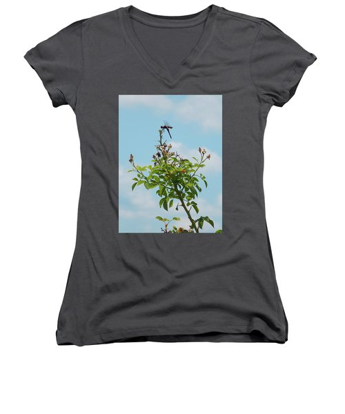 Fathers Day Visit Women's V-Neck