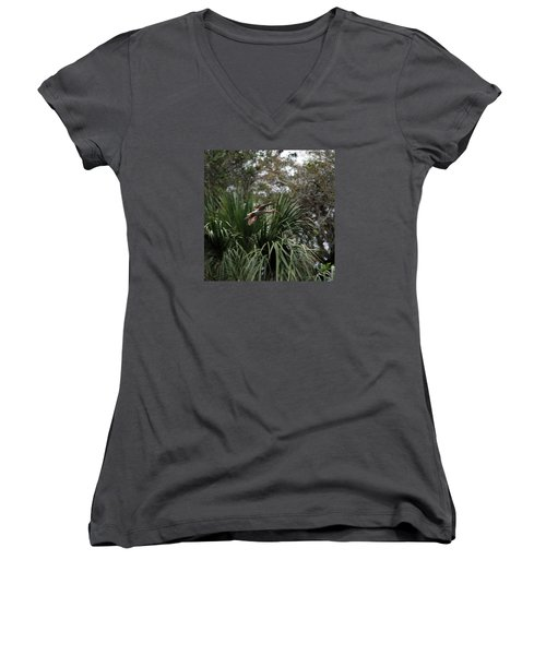 Feather 8-10 Women's V-Neck T-Shirt (Junior Cut) by Skip Willits