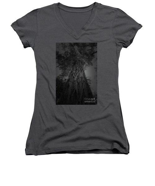 Feathered Bark Women's V-Neck (Athletic Fit)