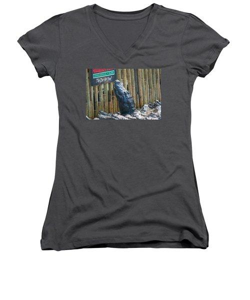 Feed Me Women's V-Neck T-Shirt