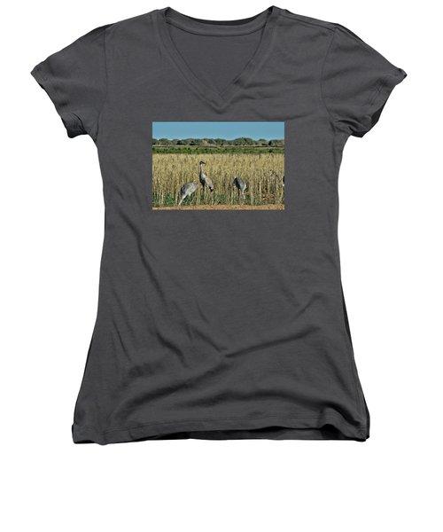 Feeding Greater Sandhill Cranes Women's V-Neck T-Shirt (Junior Cut)