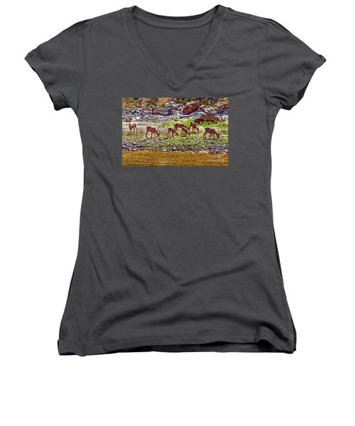 Feeding Mountain Sheep Women's V-Neck T-Shirt (Junior Cut) by Robert Bales