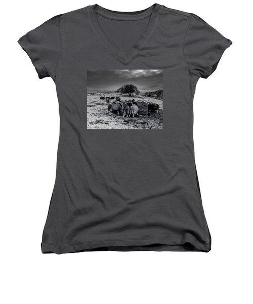 Feeding Time Women's V-Neck T-Shirt