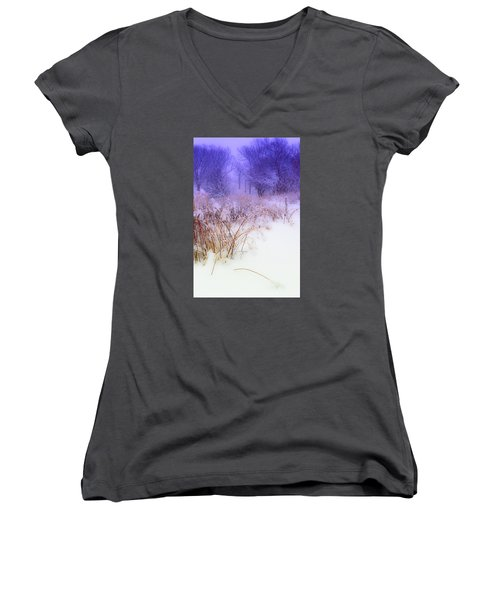 Feel Of Cold Land Women's V-Neck (Athletic Fit)