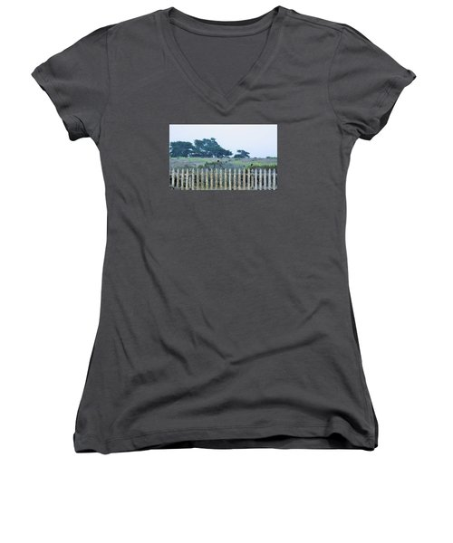 Fenced In Women's V-Neck T-Shirt