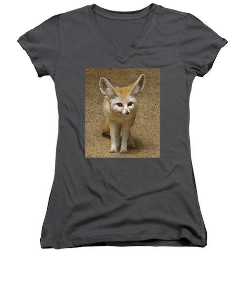 Fennec Fox Women's V-Neck