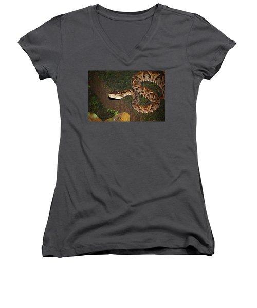 Women's V-Neck T-Shirt (Junior Cut) featuring the photograph Fer-de-lance, Botherops Asper by Breck Bartholomew