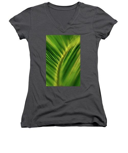 Fern Women's V-Neck T-Shirt (Junior Cut) by Jay Stockhaus