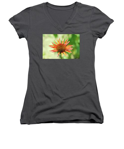 Fibonacci Women's V-Neck