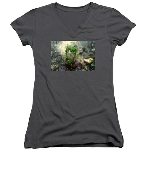 Fiddleheads Women's V-Neck T-Shirt (Junior Cut) by Debbie Oppermann