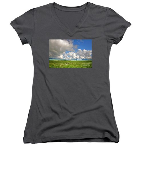 Women's V-Neck T-Shirt (Junior Cut) featuring the photograph Field by Charuhas Images