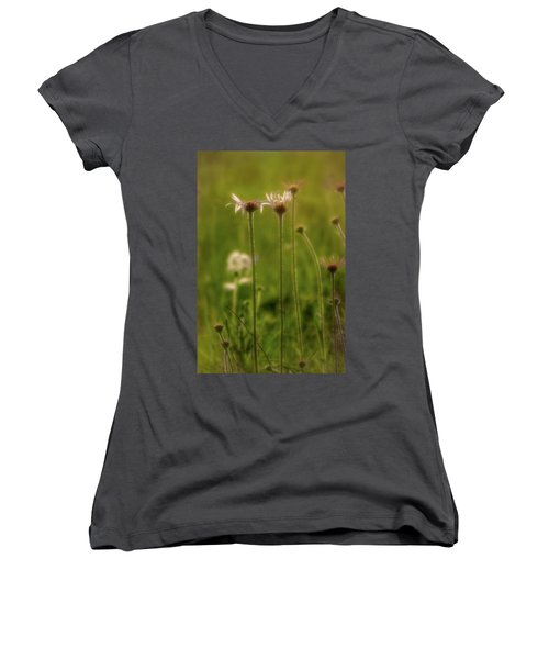 Field Of Flowers 3 Women's V-Neck