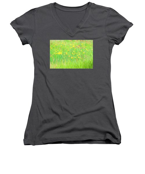 Field Of Flowers Women's V-Neck T-Shirt