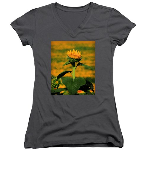 Women's V-Neck T-Shirt (Junior Cut) featuring the photograph Field Of Gold by Chris Berry