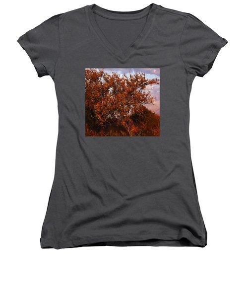 Fiery Elm Tree  Women's V-Neck