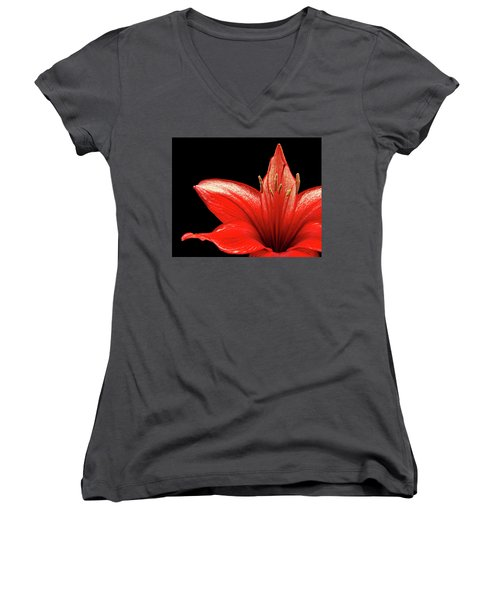 Women's V-Neck T-Shirt (Junior Cut) featuring the photograph Fiery Red by Judy Vincent