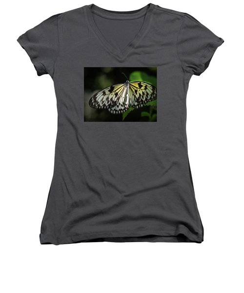 Final Metamorphosis Women's V-Neck (Athletic Fit)