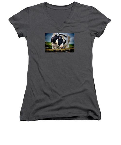 Fine Art Colour-136 Women's V-Neck T-Shirt