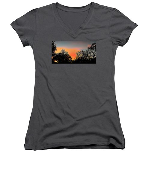 Women's V-Neck T-Shirt (Junior Cut) featuring the painting Firefly by Steve Sperry