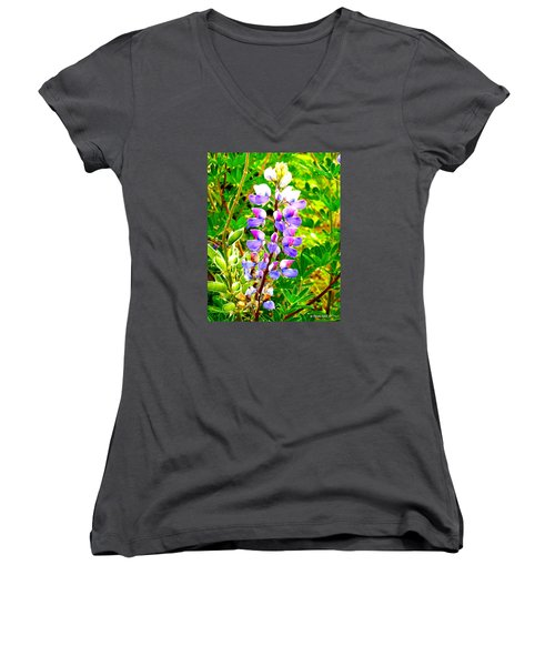 Fireweed Women's V-Neck (Athletic Fit)