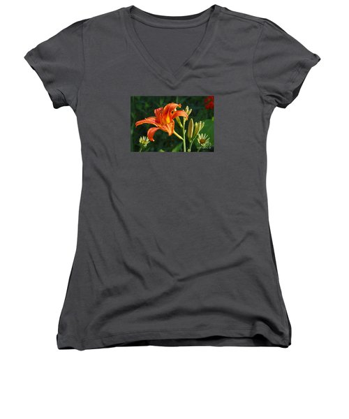 First Flower On This Lily Plant Women's V-Neck T-Shirt (Junior Cut) by Steve Augustin