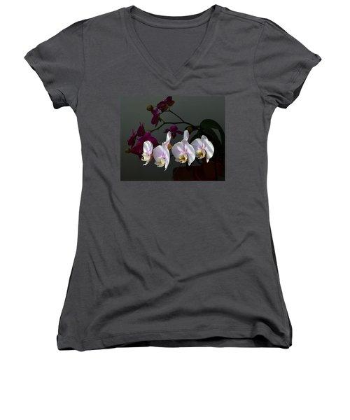First Light Women's V-Neck T-Shirt (Junior Cut) by Kathy Eickenberg