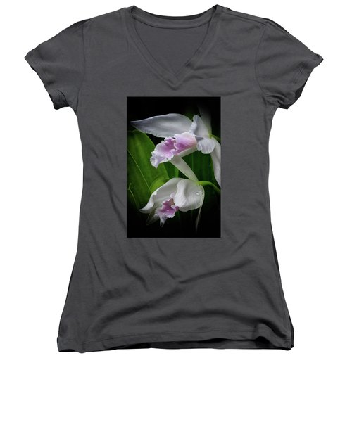 First Orchid At The Conservatory Of Flowers Women's V-Neck (Athletic Fit)