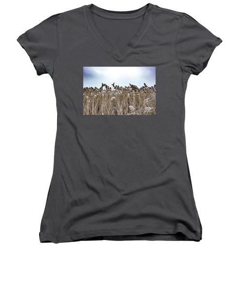 First Snow On Roman Reed Women's V-Neck (Athletic Fit)