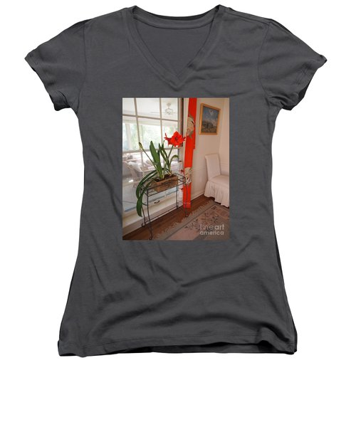 Women's V-Neck T-Shirt (Junior Cut) featuring the photograph First There Was Red by Nancy Kane Chapman