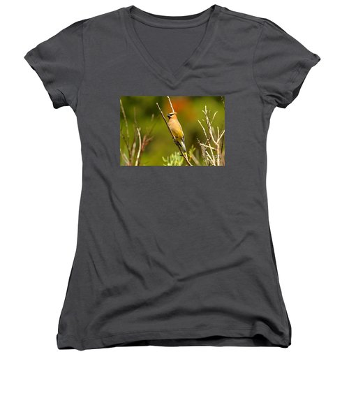 Fishercap Cedar Waxwing Women's V-Neck T-Shirt