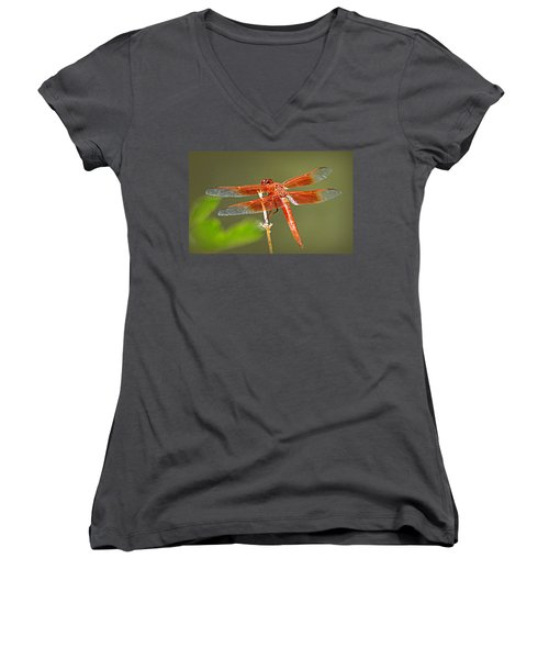 Women's V-Neck T-Shirt (Junior Cut) featuring the photograph Flame Skimmer by AJ Schibig