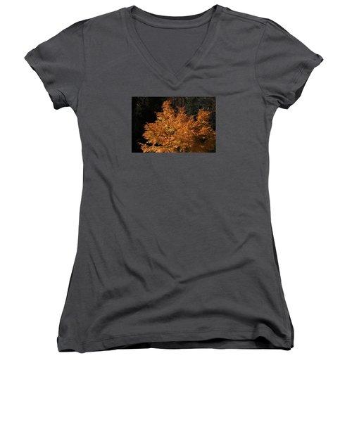 Flaming Tree Brush Women's V-Neck T-Shirt