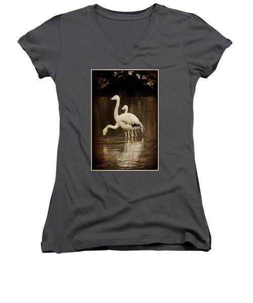 Flamingos Women's V-Neck T-Shirt