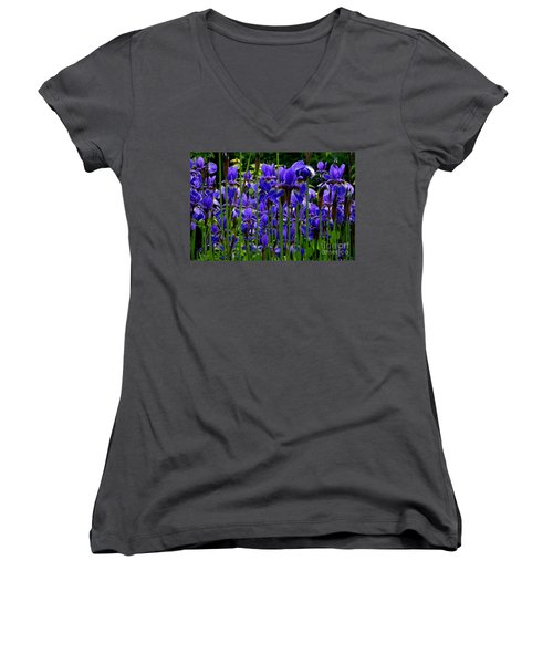 Fleur De Lys Women's V-Neck T-Shirt (Junior Cut) by Elfriede Fulda