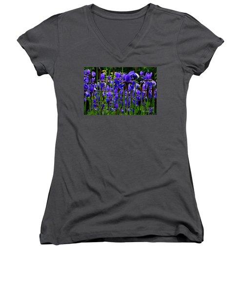 Fleur De Lys Women's V-Neck T-Shirt