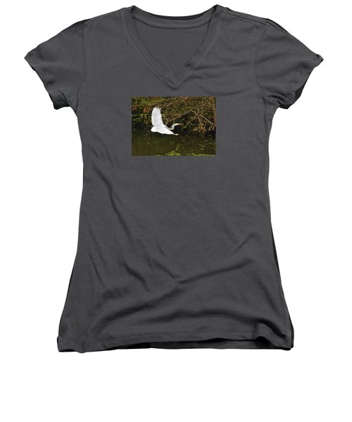 Flight Of The Egret Women's V-Neck T-Shirt
