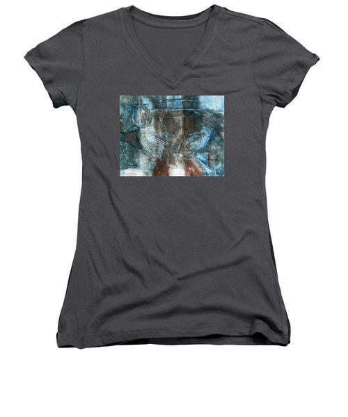 Flight Passage Women's V-Neck T-Shirt
