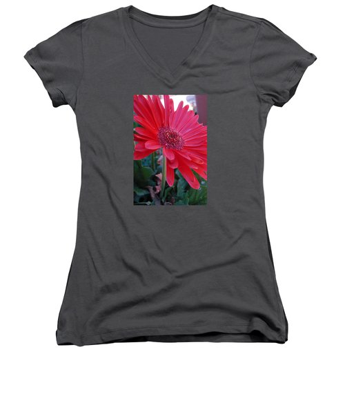 Flora Women's V-Neck T-Shirt