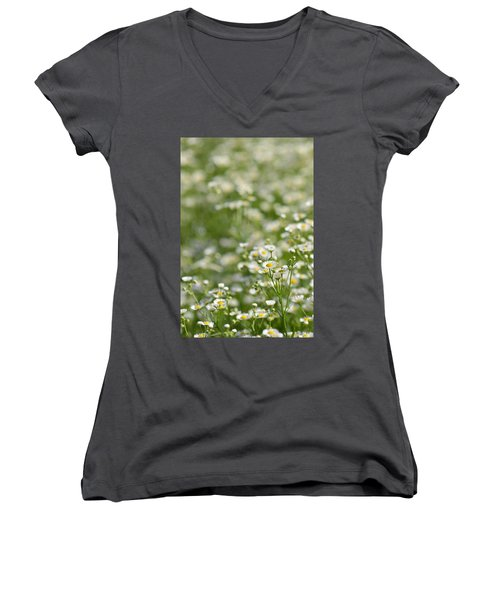 Floral Field #1 Women's V-Neck T-Shirt